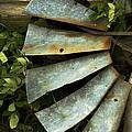 Blades by Chuck De La Rosa