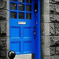 Blue Door by Lilliana Mendez