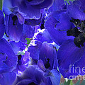 Blue Dream Floral by Beverly Guilliams
