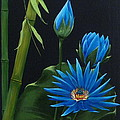 Blue Lotus by D L Gerring