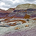 Blue Mesa Trail In Petrified Forest National Park-arizona by Ruth Hager