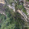 Blue Mountains Australia by Tim Hester