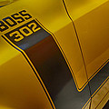 Boss 302 by Tommy Anderson