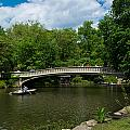 Bow Bridge Central Park by Amy Cicconi