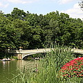 Bow Bridge Over The Lake by Christiane Schulze Art And Photography
