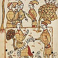 Boysset, Bertrand 1355-1415. Surveyor by Everett