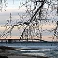 Bridge by Linda Kerkau