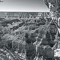 Bright Angel Creek by Jim Baker