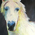 Bright Eyed Bailey by Jodie  Scheller