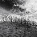 Bruneau Dunes State Park Idaho by Vishwanath Bhat