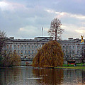 Buckingham Palace by Lynn Bolt