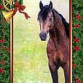 Buckskin Quarter Horse Christmas Card by Olde Time  Mercantile