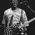 Buddy Guy by Concert Photos