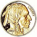 Buffalo Nickel by Fred Larucci
