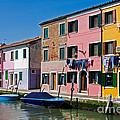 Burano, Venice by David Davis