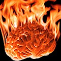 Burning Human Brain by Victor De Schwanberg