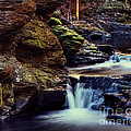 Bushkill Falls by Emily Kay
