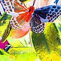 Butterfly  by Nico Bielow