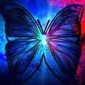 Butterfly by T T