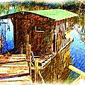 Cajun House Boat by Ronald Olivier