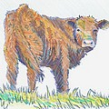 Calf by Mike Jory