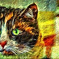 Calico Kitty by Alice Gipson