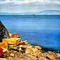 Calm In Balaton Lake by Odon Czintos