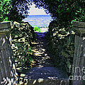 Cana Island Walkway Wi by Tommy Anderson