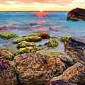 Cancun Sunrise by Marcia Colelli