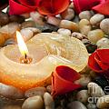 Candle And Petals by Tim Hester