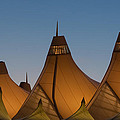 Canopies At Dusk by Brian  Weiss