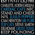 Carolina Panthers by Jaime Friedman