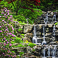 Cascading Waterfall by Elena Elisseeva