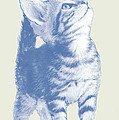 Cat With Love Hart Pop Modern Art Etching Poster by Kim Wang