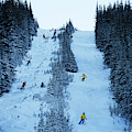 Cat Skiing At Fortress Mountain by Todd Korol