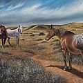 Cayuse Country by Ricardo Chavez-Mendez