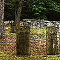 Cemetery by Mim White