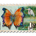 1 Cent Butterfly Stamp by Amy Kirkpatrick