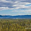 Central Yukon T Canada Taiga And Ogilvie Mountains by Stephan Pietzko