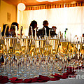 Champagne Glasses At The Party by Michal Bednarek
