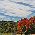Changing Seasons by Skip Willits