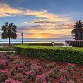 Charleston Sc Waterfront Pineapple Fountain by Carol VanDyke