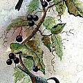 Chickadees And Blueberries by Steven Schultz