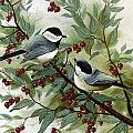 Chickadees And Cherries by Steven Schultz