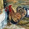 Chicken Coop by Steven Schultz