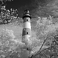 Chincoteague Island Lighthouse by Jack Nevitt