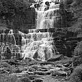 Chittenango Falls by Anne Marie Corbett