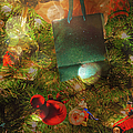 Christmas Dreams by Paulette B Wright
