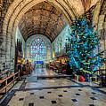 Christmas Tree by Adrian Evans