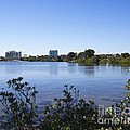 City Of Melbourne On The Intracoastal Waterway In Central Florid by Allan  Hughes